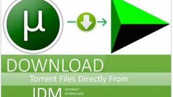 How to Download Torrent Files Using IDM In 2020